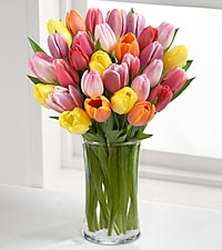 FTD Tulips