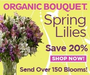 Organic Bouquet 20